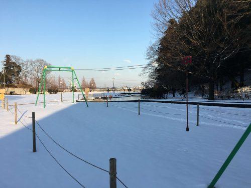 千葉県柏市あけぼの山公園内。大雪のおかげで雪まみれ